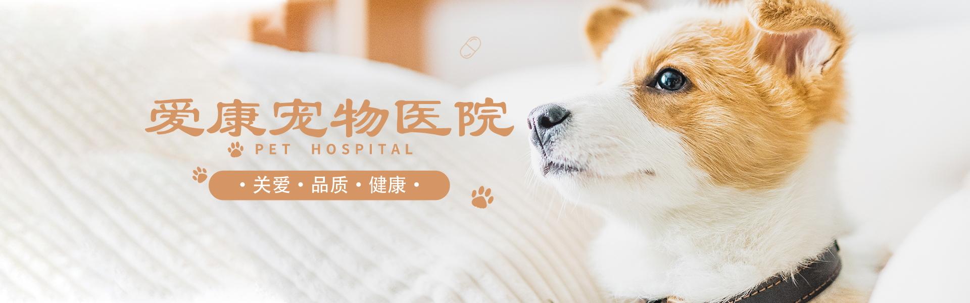 海拉尔宠物诊所